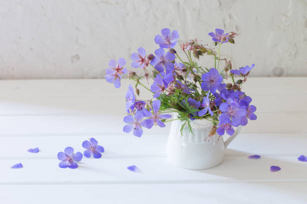 flowers in jug on white background - iris flower stock photos and pictures
