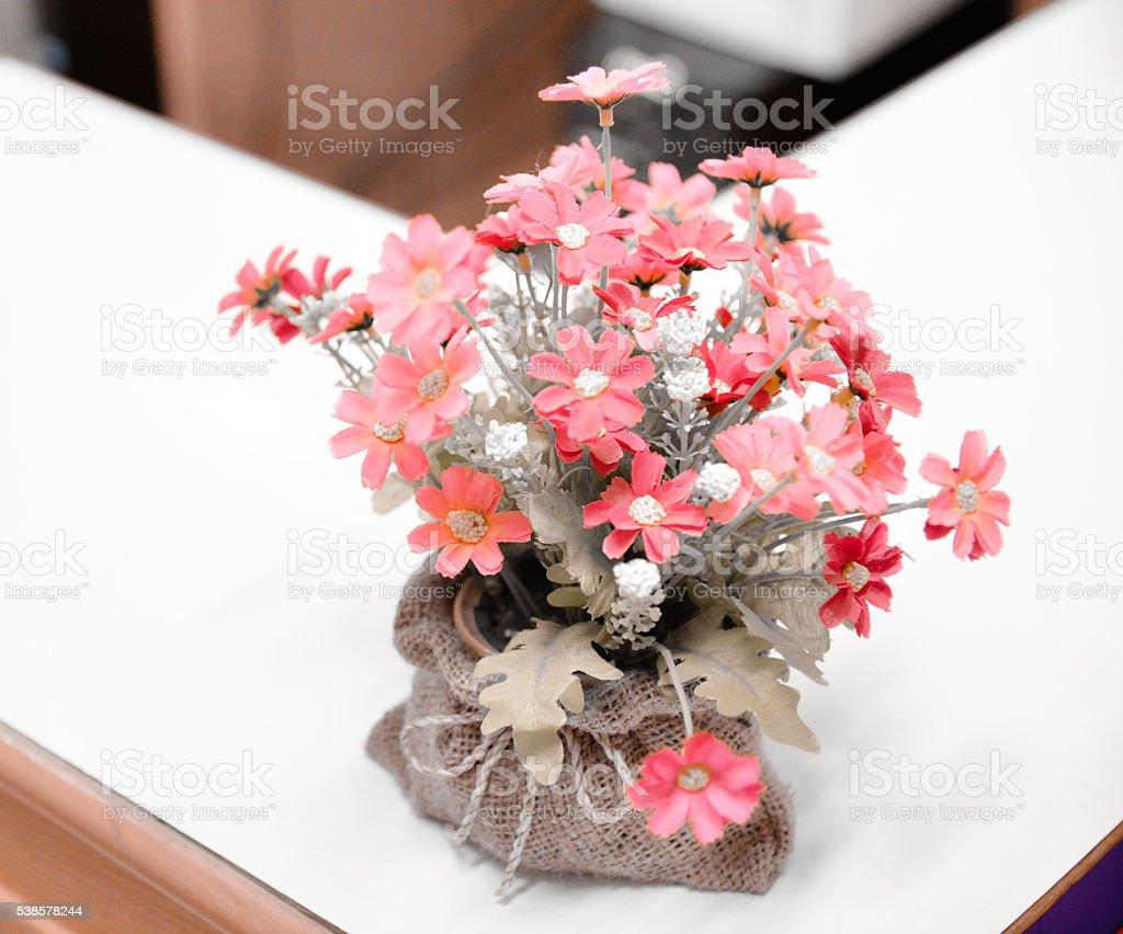 цветок ясенец фото посадка и уход
