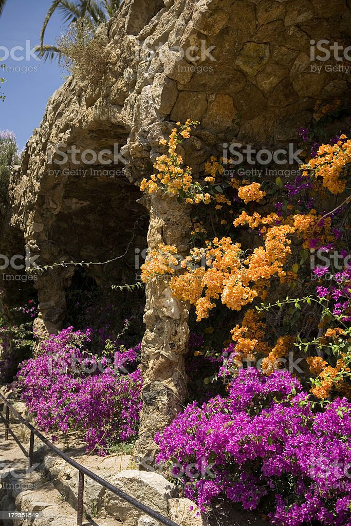 Flowers in Park Guell royalty-free stock photo