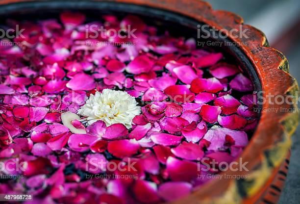 Flowers in spa picture id487968728?b=1&k=6&m=487968728&s=612x612&h=d4cq62g0mvdktcgqxkcoo3tcqj9y5lm2hadht kbiwi=
