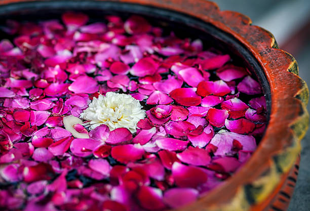 flowers in spa - thai massage stock photos and pictures