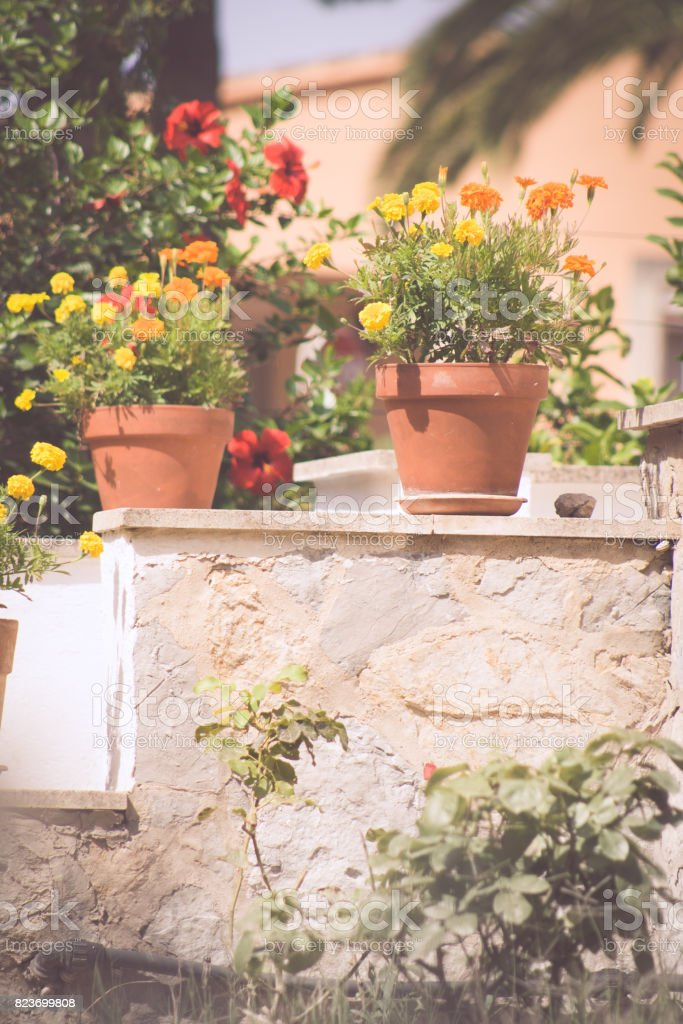 Flowers in the frontyard of a spanish house stock photo