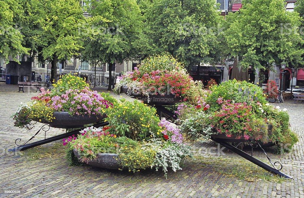 Blumen auf dem Platz Lizenzfreies stock-foto