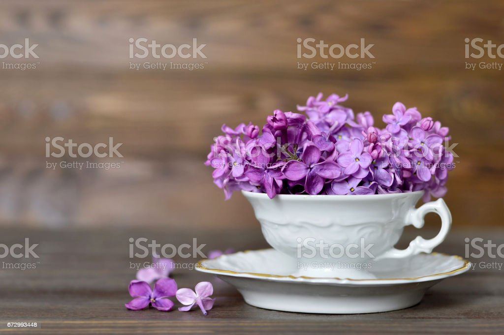 Flowers in the vintage cup on wooden background stock photo