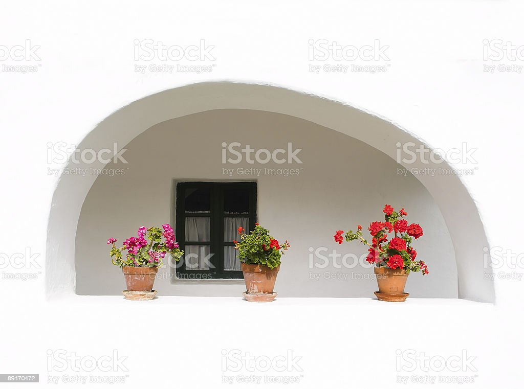 Flowers in the window royalty-free stock photo