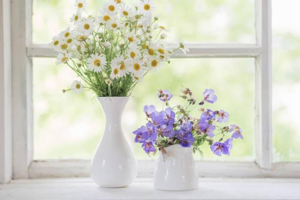blumen in vasen auf fensterbank - küche deko lila stock-fotos und bilder