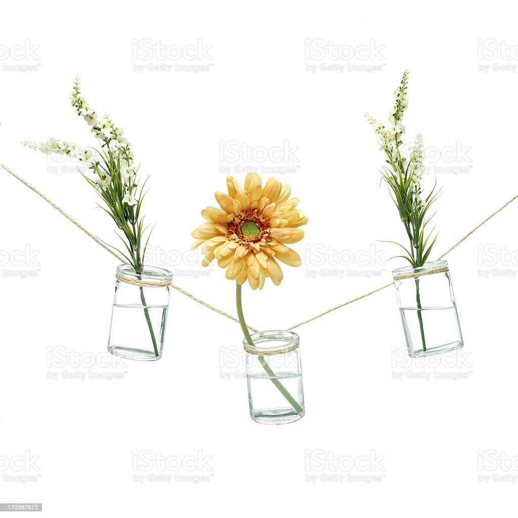 Flowers in vases royalty-free stock photo