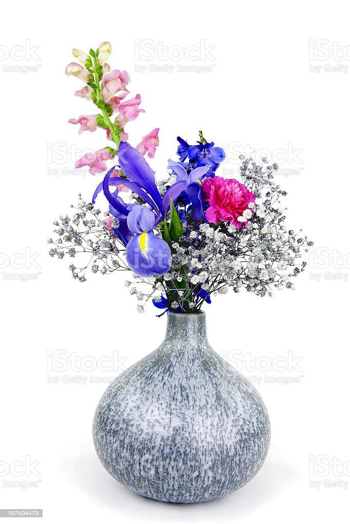 Flowers Isolated stock photo