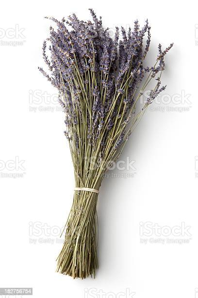 Flowers lavender picture id182756754?b=1&k=6&m=182756754&s=612x612&h= c3yx8rc3khfpwoqugpr9q76youz5ne2dxwsd 0wc44=