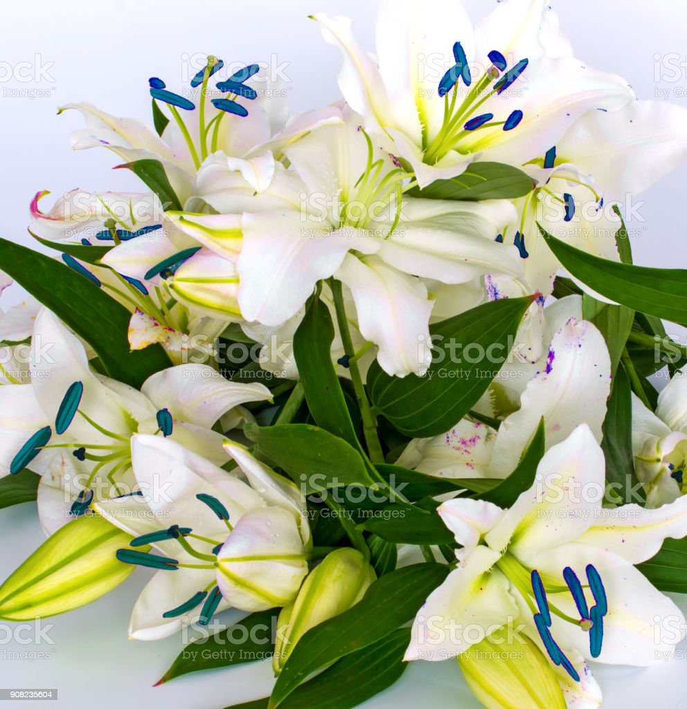 Flowers Lilies Adorned With Stones And Different Decorations Stock