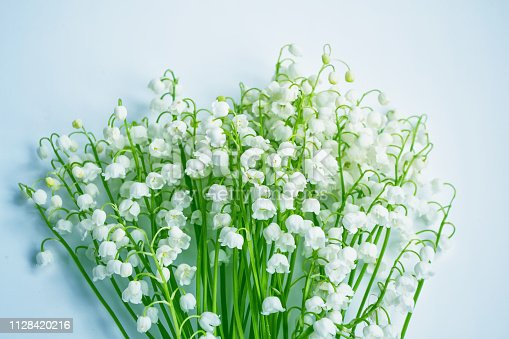 istock flowers lily of the valley 1128420216