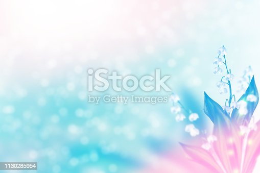 istock flowers lily of the valley 1130285954