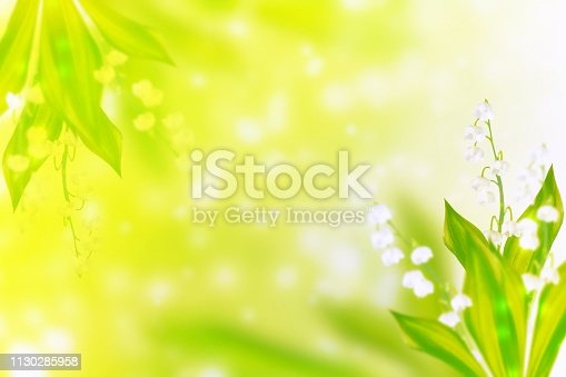 istock flowers lily of the valley 1130285958