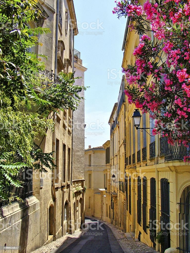 Flowers lining a narrow street in old Montpellier, France stock photo