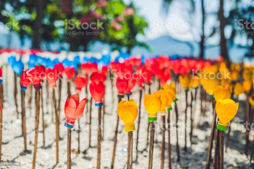 Flowers made from a plastic bottle. plastic bottle recycled. Waste recycling concept stock photo
