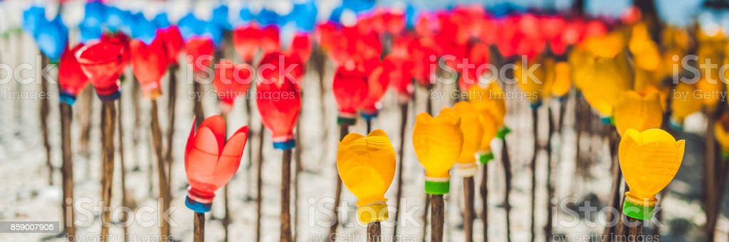 BANNER Flowers made from a plastic bottle. plastic bottle recycled. Waste recycling concept Long Format stock photo