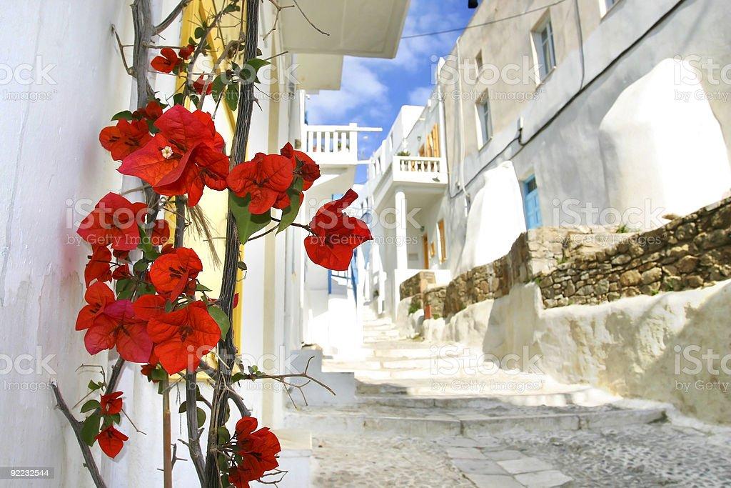 Flowers on a Mykonos street royalty-free stock photo