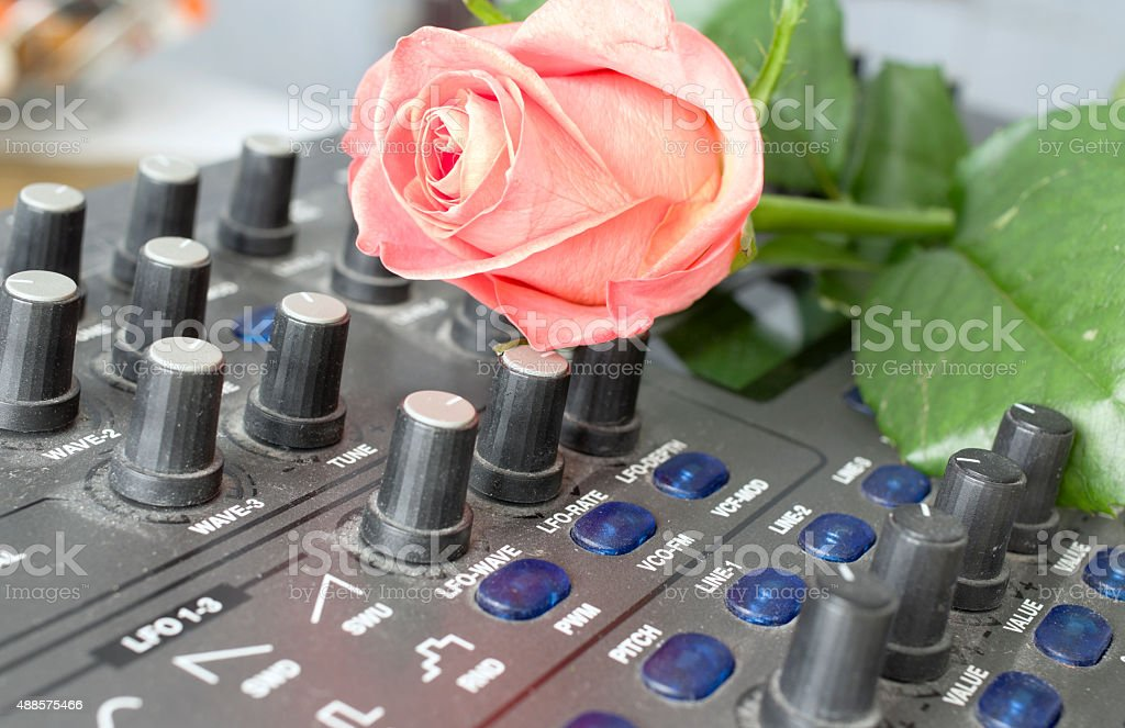Flowers On A Synthesizer stock photo