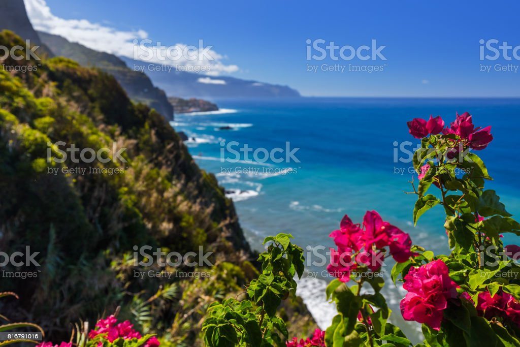 Flowers on coast in Boaventura - Madeira Portugal stock photo