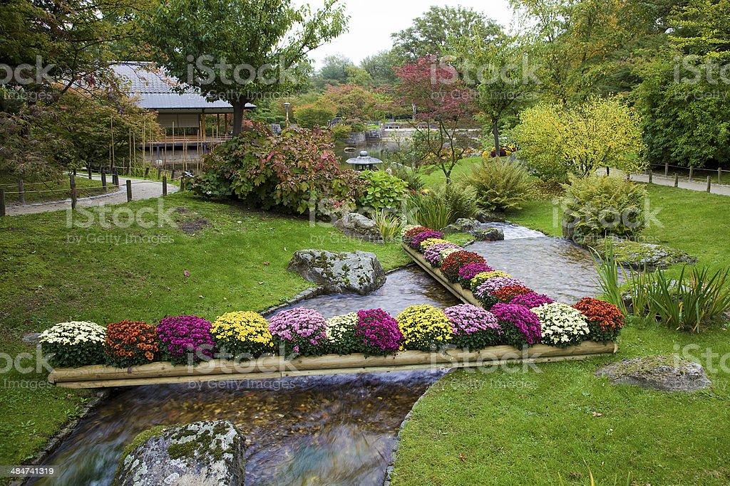 Photo Libre De Droit De Fleurs Sur Creek Dans Le Jardin Japonais
