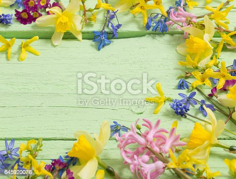 istock flowers on green wooden background 645920076