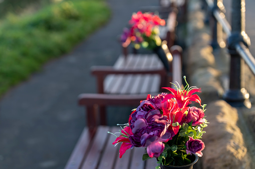 In the foreground is a bunch of flowers on a memorial bench on the headland overlooking the North Sea at Tynemouth, Tyne and Wear, England, UK.