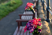 istock Flowers on memorial bench on the clifftop at Tynemouth. 1285246550