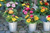 flowers on street market