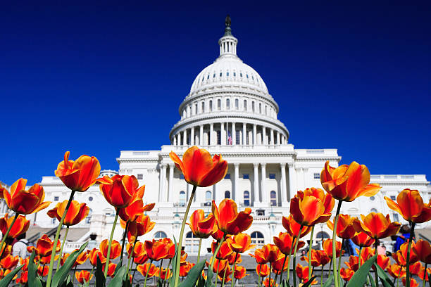 Flowers on US Capitol Grounds
