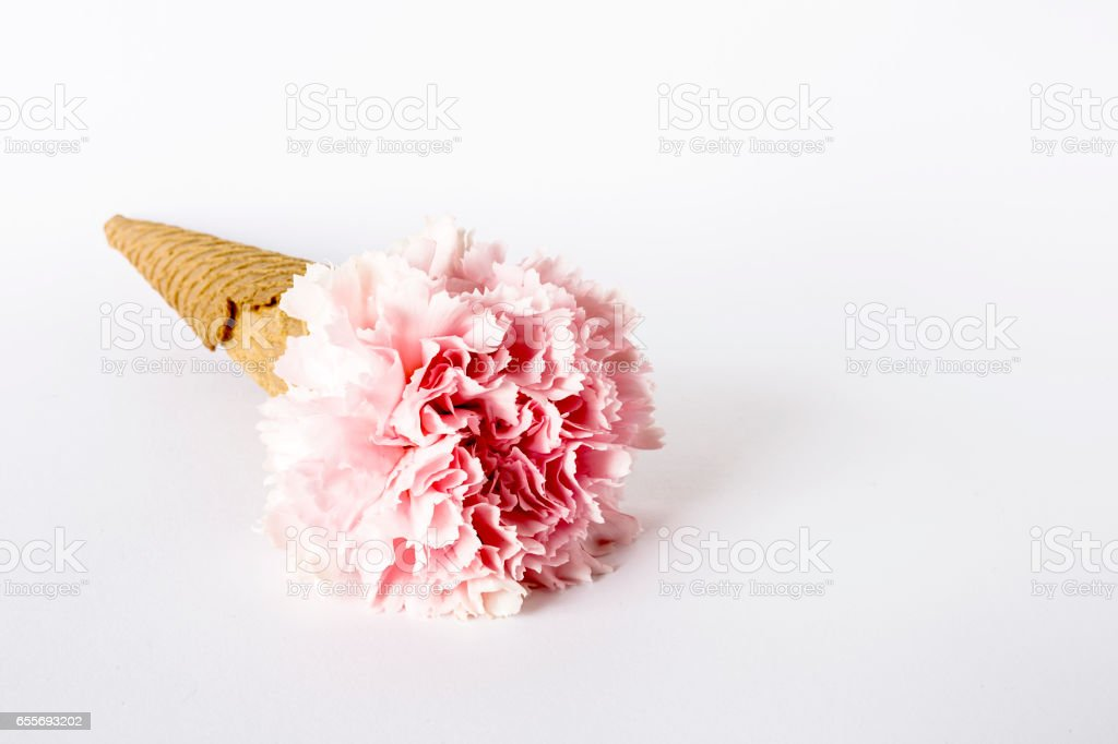 Flowers on white background. Flat lay, top view stock photo