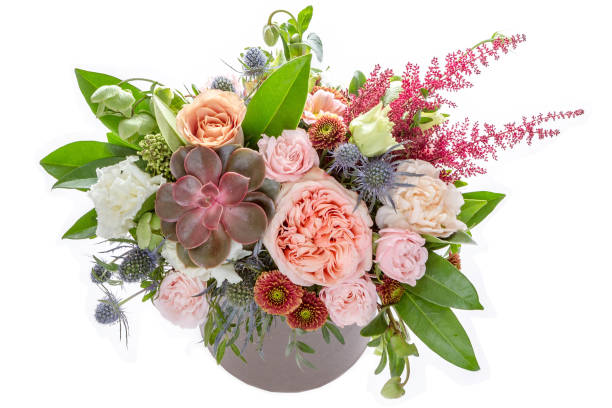 Flowers on white background Flowers on white background flower arrangement stock pictures, royalty-free photos & images