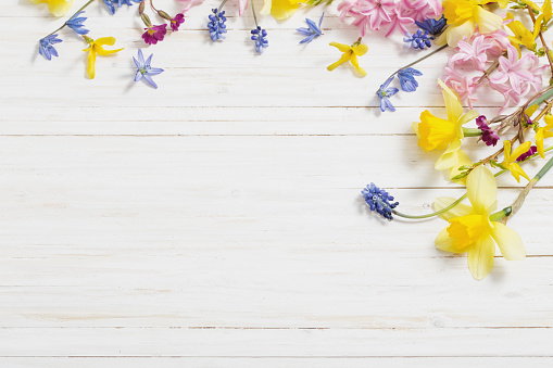 flowers on white wooden background