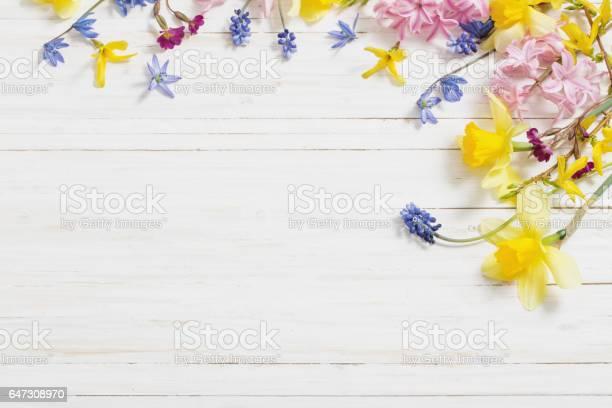 Flowers on white wooden background picture id647308970?b=1&k=6&m=647308970&s=612x612&h=bcsztdfmkhswivf7cs 5uebbxbpirjhuteyifqy0vfq=
