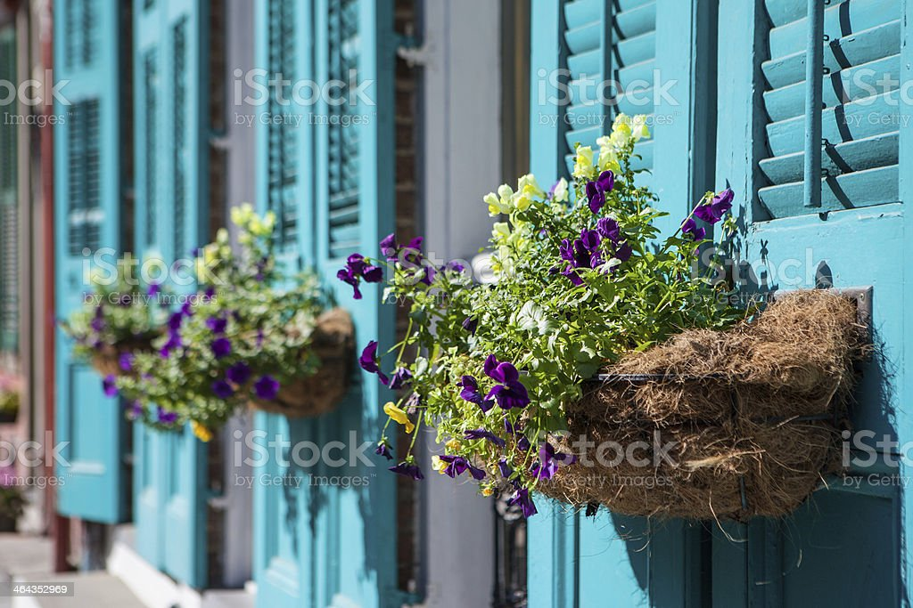 Flowers outside of a building in New Orleans stock photo