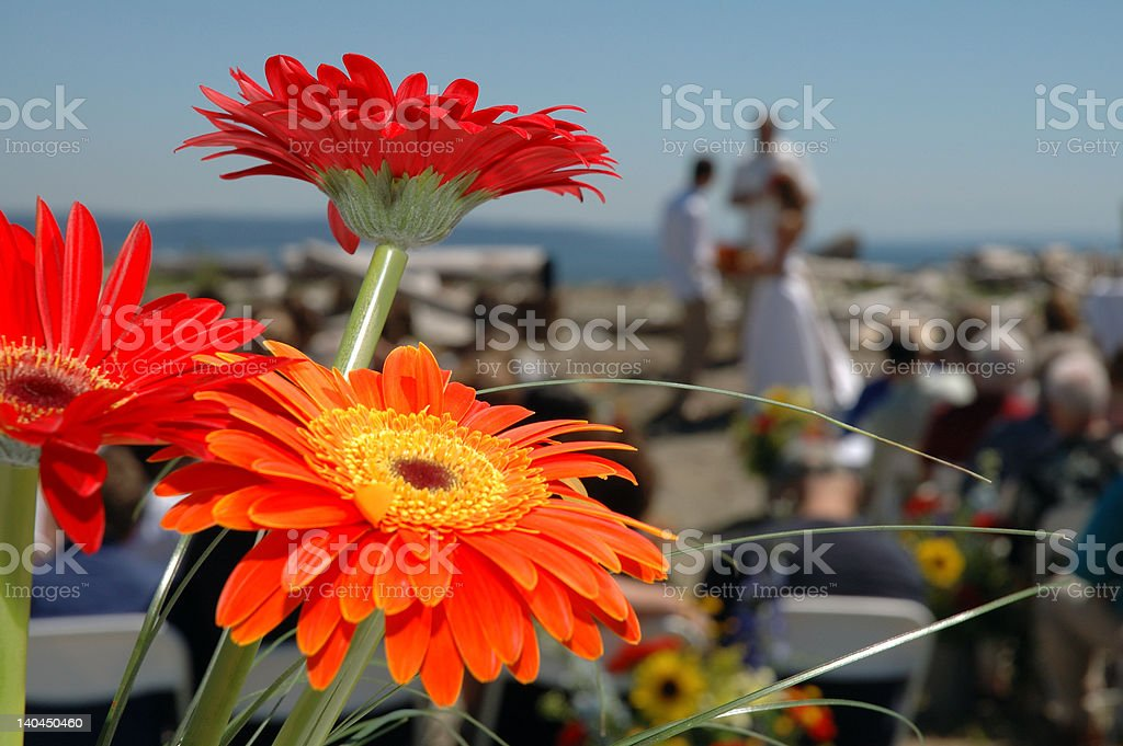 Flowers Perspective of the Ceremony royalty-free stock photo