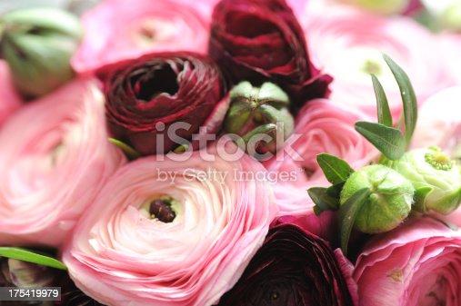 istock flowers 175419979