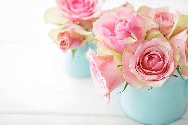 Blumen – Foto