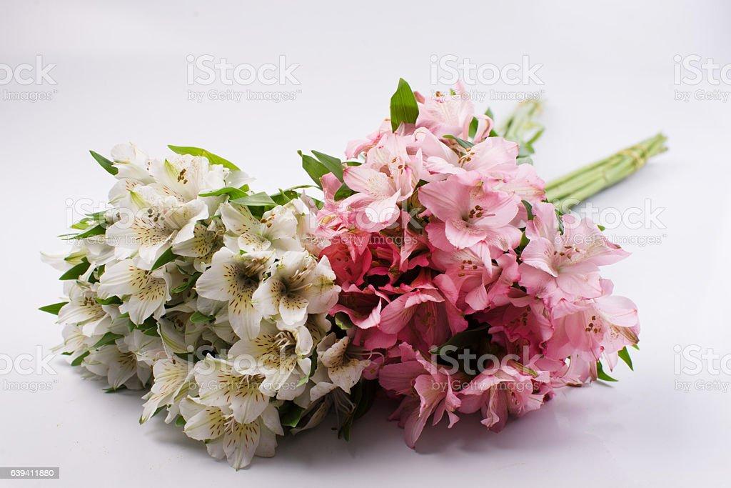 Kwiaty  – zdjęcie