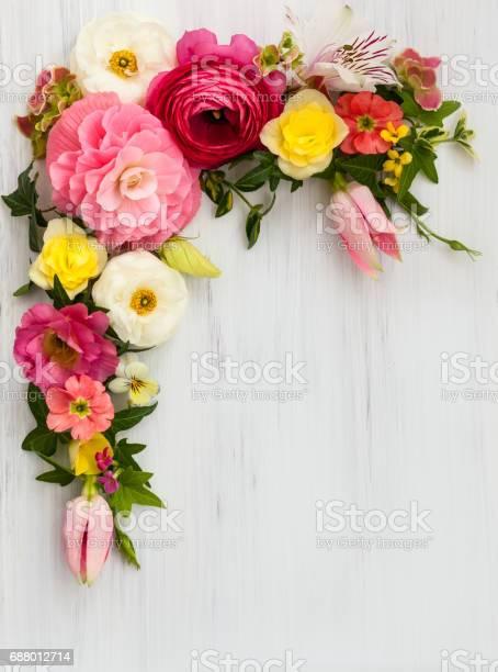 Flowers picture id688012714?b=1&k=6&m=688012714&s=612x612&h=jin6osw j1nchoqpd9hfxfayremsg9dsaeltzhmhb1c=