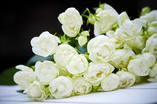 Blumen Stockfoto und mehr Bilder von Baumblüte