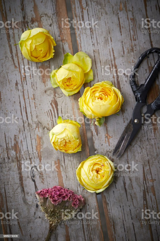Flowers - Royalty-free Beauty Stock Photo
