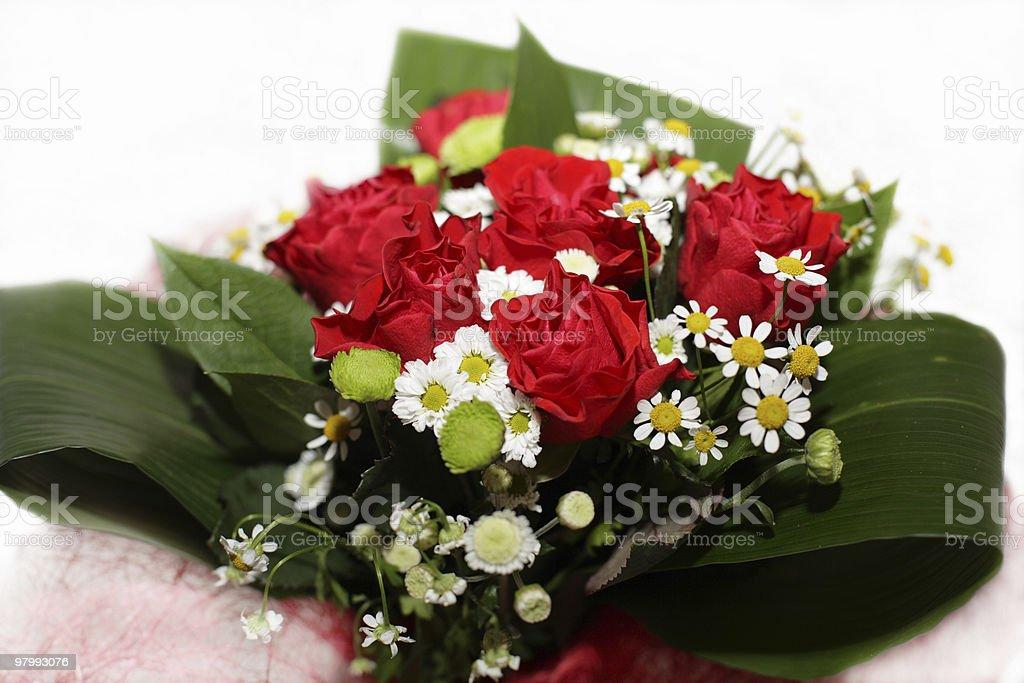 Flowers royalty free stockfoto