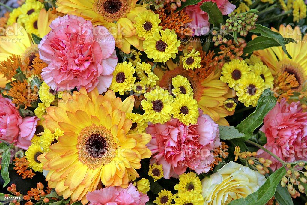 꽃 royalty-free 스톡 사진