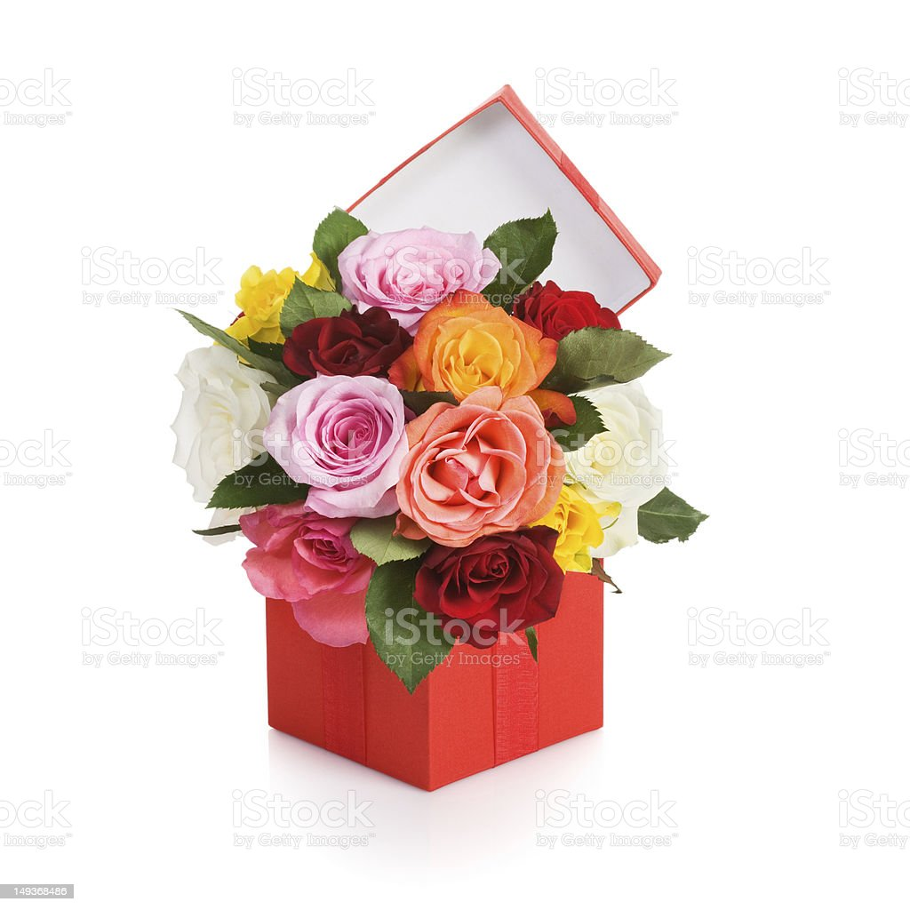 Flowers Present royalty-free stock photo