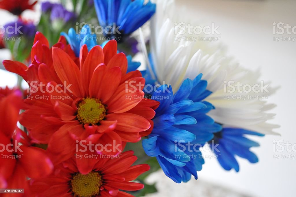 Flowers- Red, white and blue stock photo