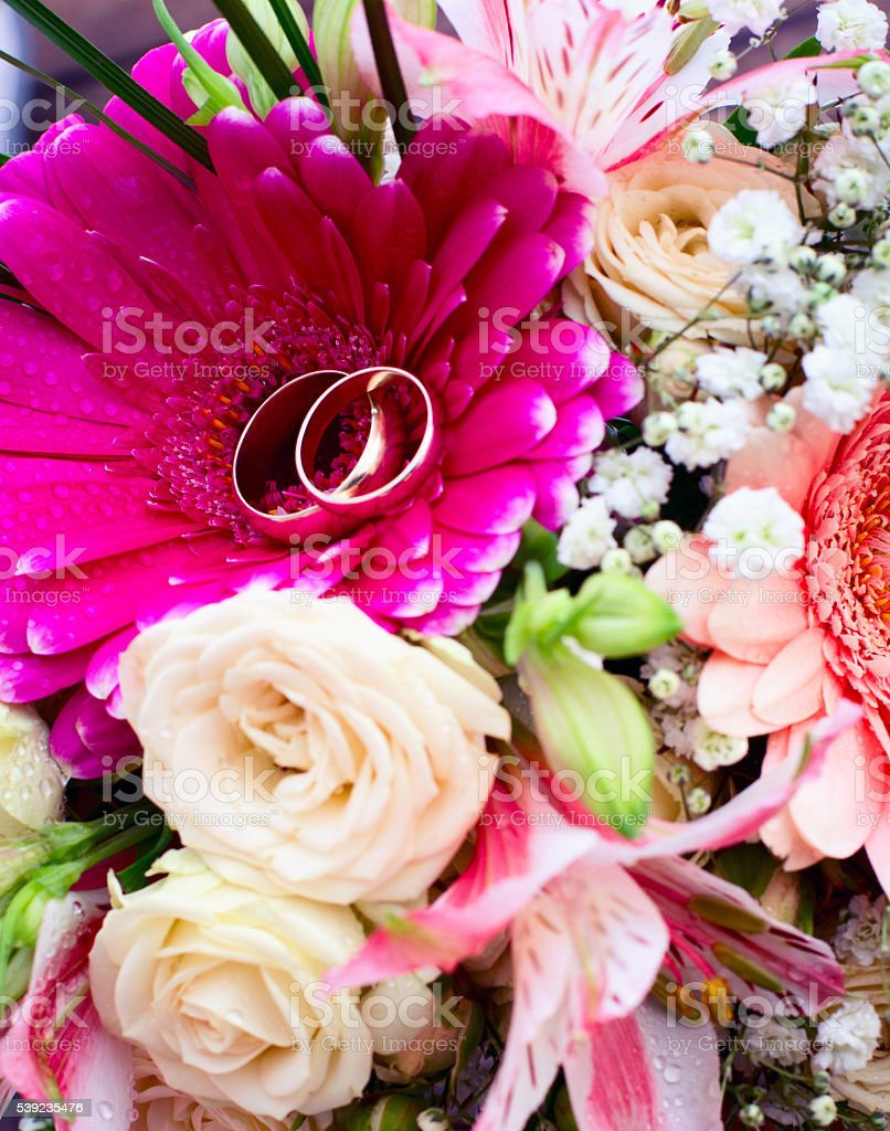 Flowers rose on wooden surface. royalty-free stock photo