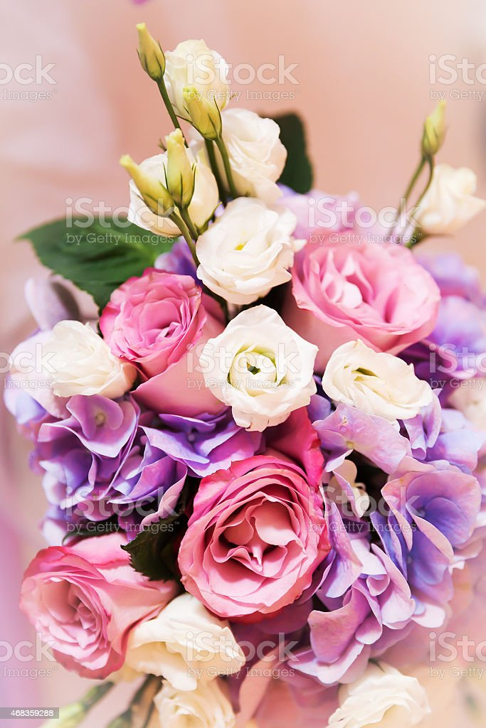 Flowers roses blooming bouquet royalty-free stock photo