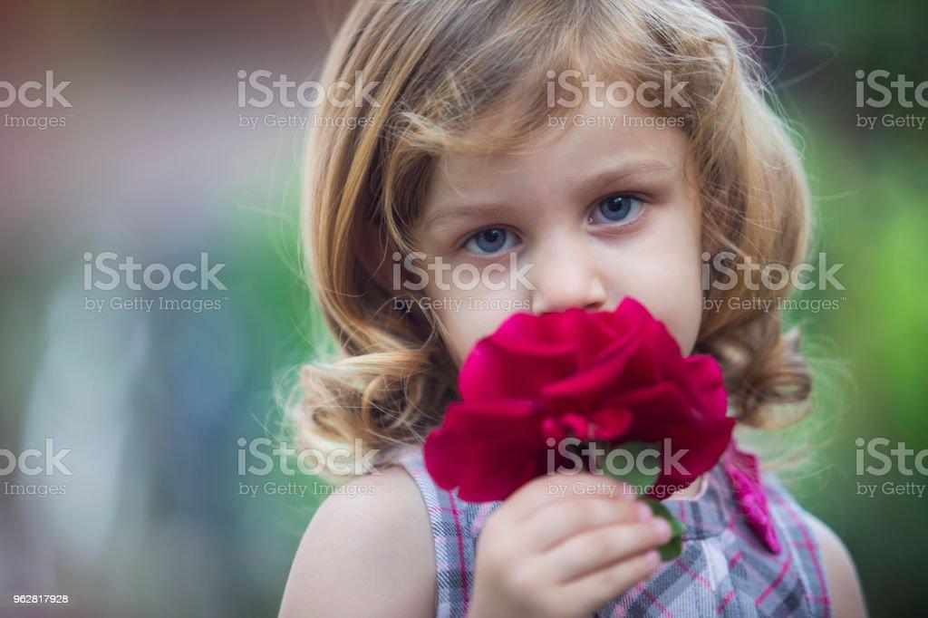 Cheiros de flores lindas - Foto de stock de Amor royalty-free