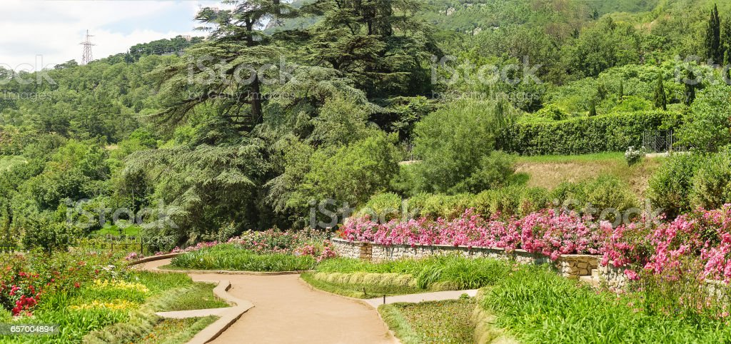 Flowers, trees and shrubs growing in tiers on the slopes of mount. Crimea, Russia stock photo