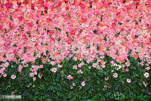 Flowers wall